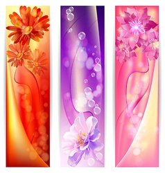 beautiful abstract background with flowers banner vector image