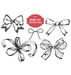 collection of hand drawn bows vector image