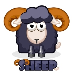 Cute cartoon square black Sheep vector