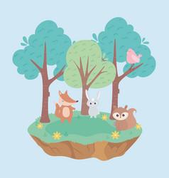 cute little rabbit fox bird and squirrel animals vector image
