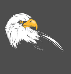 Eagle head on a dark background vector