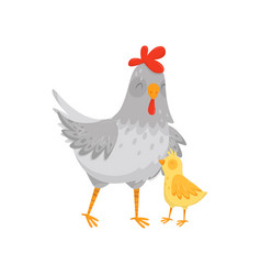 Flat icon of gray mother hen with her vector