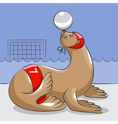 Seal - the water polo player vector image