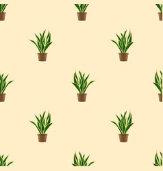 Snake plant seamless on ivory background vector