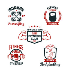fitness sport club gym and bodybuilding badge set vector image