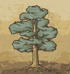 oak tree sketch vector image vector image