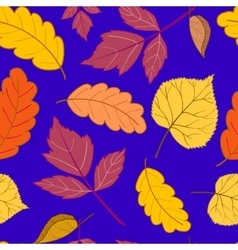 leaves on a dark blue vector image vector image
