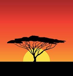Africa sunset vector