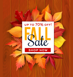 Autumn sale foliage leaf poster web banner vector