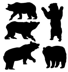 bear set vector image