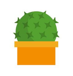 Cactus in a pot flat vector