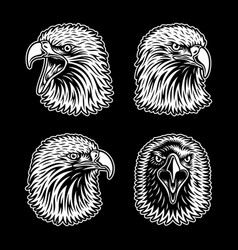eagle head collection on black background vector image