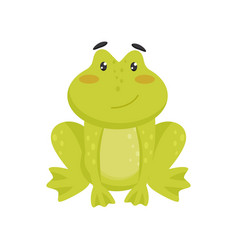 flat icon of cute smiling frog cartoon vector image