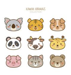 variety cute animals set vector image