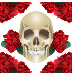 human skull modern style and roses vector image vector image