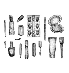 Collection of make up treatment objects vector image vector image