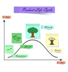 product life cycle as sticky notes on white vector image vector image