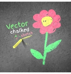 Chalk drawing of flower vector image