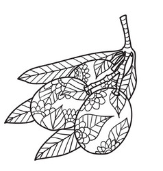 coloring pages for adults black ink hand vector image