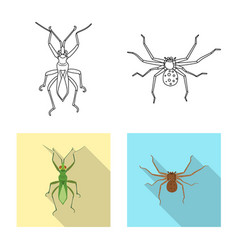 Insect and fly icon vector