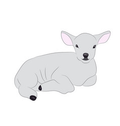lamb is drawing color vector image