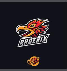 phoenix emblem logo esport logo vector image