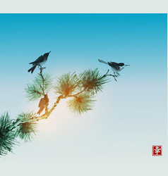 pine tree branch and birds on blue sky background vector image