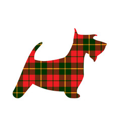 Scotch terrier tartan texture plaid red pattern vector