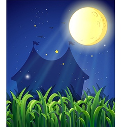 The carnival at night vector