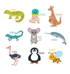 ABC Cute zoo alphabet in Funny cartoon animals vector image
