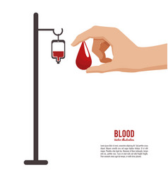 blood hand holding drop vector image