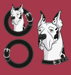 A set of color drawing of the dog in the collar vector