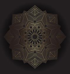 decorative mandala design vector image