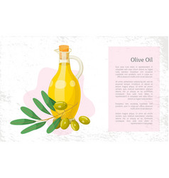 Hair olive oil natural cosmetics organic essence vector