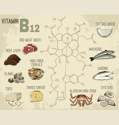 vitamin b12 image vector image