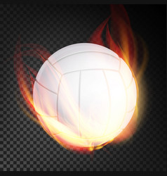 Volleyball ball realistic white volley vector