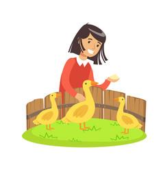 cute little girl feeding ducks with grain in a vector image vector image