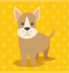 cute puppy dog vector image vector image
