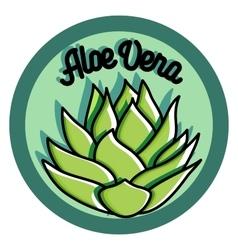 Color vintage Aloe vera emblem vector image
