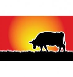 cow meadow vector image