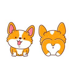 Cute happy corgi dog front and back vector