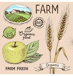 Farm emblem vector