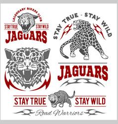 jaguar custom motors club t-shirt logo on vector image