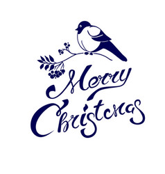 merry christmas lettering on a card with bullfinch vector image