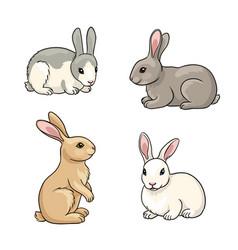 set rabbits vector image