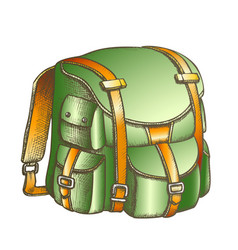 tourist travel backpack suitcase color vector image