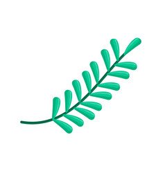 tree branches leaves vector image