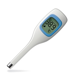 electronic thermometer vector image vector image