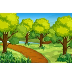 Park with green trees and hiking track vector image vector image