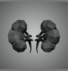 black low poly human kidneys on a gray background vector image vector image